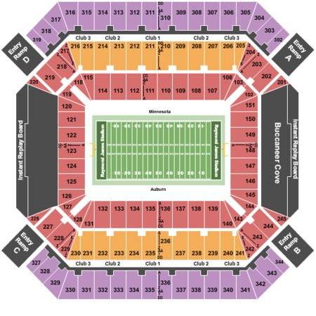 Raymond James Stadium Outback Bowl