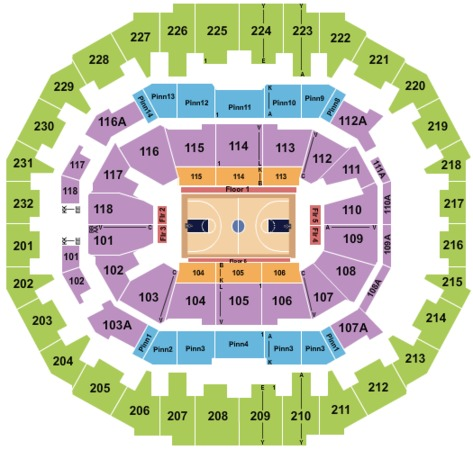 FedExForum Basketball
